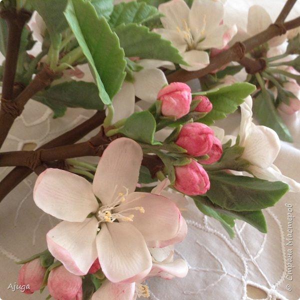 Цветы запоздалые..... Яблоневый цвет из полимерной глины . Ручная работа. фото 3