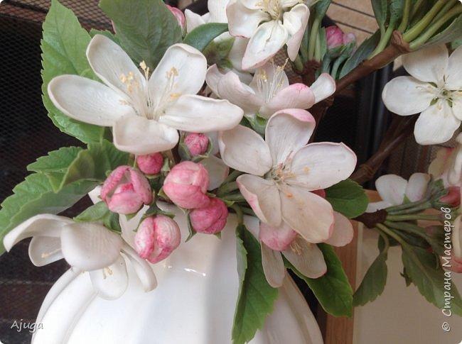 Цветы запоздалые..... Яблоневый цвет из полимерной глины . Ручная работа. фото 5