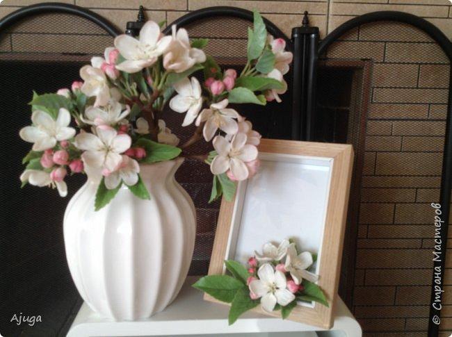 Цветы запоздалые..... Яблоневый цвет из полимерной глины . Ручная работа. фото 6