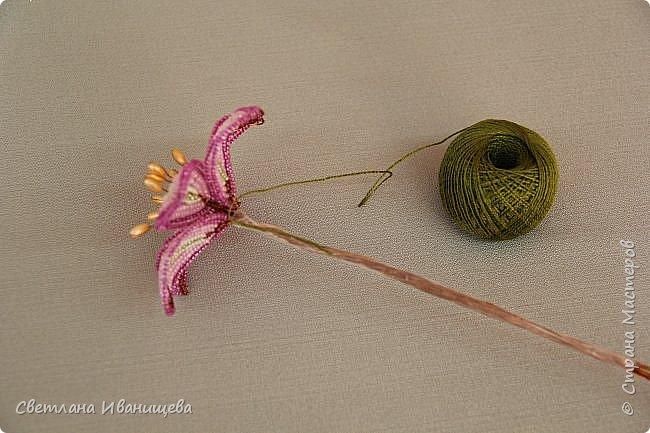 Букет замечательных лилий выполнен в технике французского плетения из бисера. Авторы работы: Анисимова Алина и Камышан Вероника. Особенно букеты из бисера любят мамы и бабушки, поэтому данный букет может послужить подарком ко Дню матери, на 8 марта или День рождения. фото 18