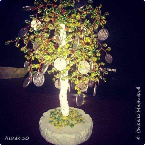 Денежное дерево(моя импровизация)