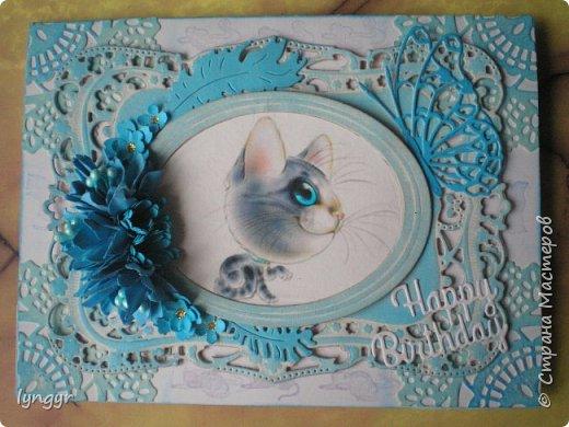 Кошачья серия в голубом. фото 3