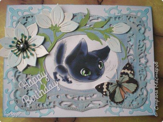 Кошачья серия в голубом. фото 5
