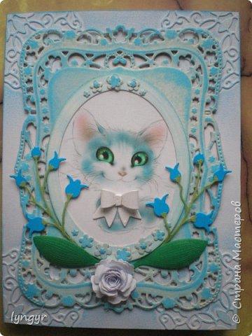 Кошачья серия в голубом. фото 1