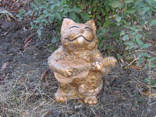 Я снова немного дурачусь, в этот раз представляю Вам кота, который исполняет серенаду для всех кошечек в округе)  фото 1