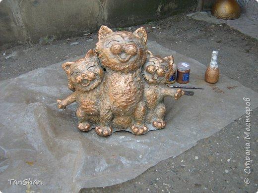 Поющие коты фото 3