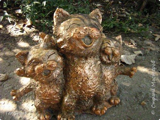 Поющие коты фото 2