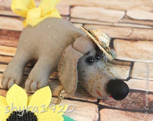 Преданность  Твоя собака молчит, не лает. Не признается в своей любви. Тихонько след твой из луж лакает, И мордой трется о сапоги.  Твоя собака в углу ютится, и греет коврик своей спиной. Она готова со всем мириться за счастье рядом дышать с тобой.  Автор: Майя Кузнецова фото 3