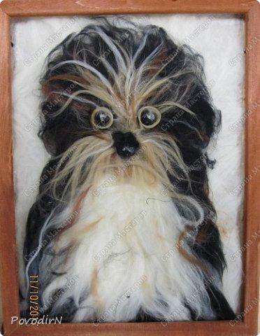 """В прошлом году мои девочки """"рисовали"""" шерстью пейзажи и цветы. В преддверии наступающего года собаки, мы рисовали собак. Работы формата А3 (30х40см). Я просила принести фото домашнего питомца (если такого нет, то фото собаки-мечты). Фотографии принесли в телефонах - современные дети, современные телефоны, у всех безлимитный интернет....  Результат перед вами. фото 8"""