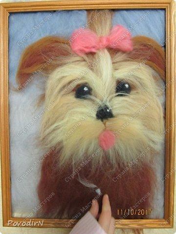 """В прошлом году мои девочки """"рисовали"""" шерстью пейзажи и цветы. В преддверии наступающего года собаки, мы рисовали собак. Работы формата А3 (30х40см). Я просила принести фото домашнего питомца (если такого нет, то фото собаки-мечты). Фотографии принесли в телефонах - современные дети, современные телефоны, у всех безлимитный интернет....  Результат перед вами. фото 9"""