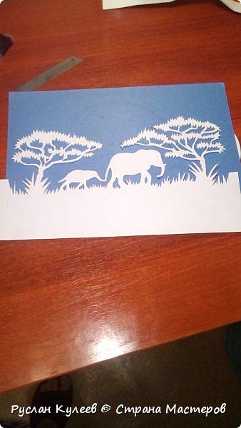 Слоны в Сафари фото 2