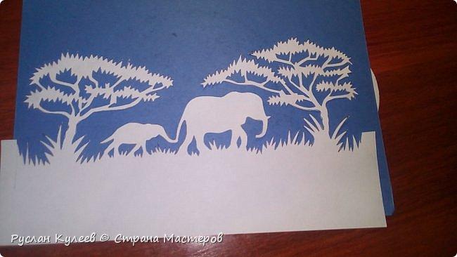 Слоны в Сафари фото 1
