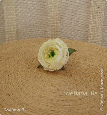 А вот, собственно, и он...  Кстати, чашечка цветка всего 4 см в диаметре и содержит 60 лепестков!