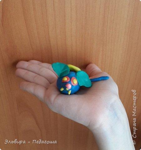 Осваиваем с первоклашками пластилин. Из шариков получились разноцветные гусенички. фото 18