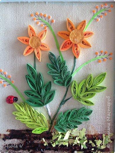Цветы фото 5