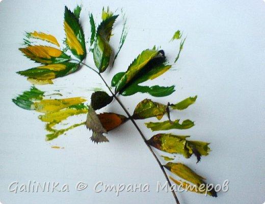 На этой неделе нашлось занятие для моего трёхлетнего внука.  Мы печатаем листья! фото 9
