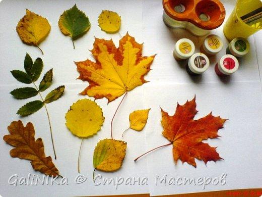 На этой неделе нашлось занятие для моего трёхлетнего внука.  Мы печатаем листья! фото 13