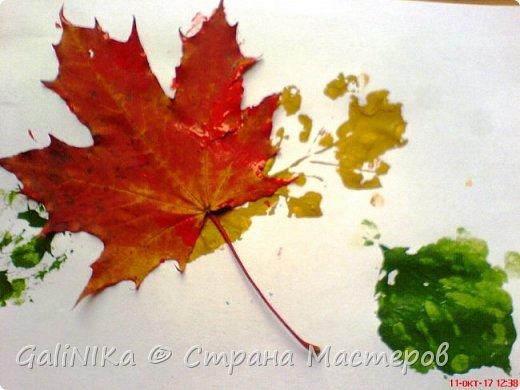 На этой неделе нашлось занятие для моего трёхлетнего внука.  Мы печатаем листья! фото 19