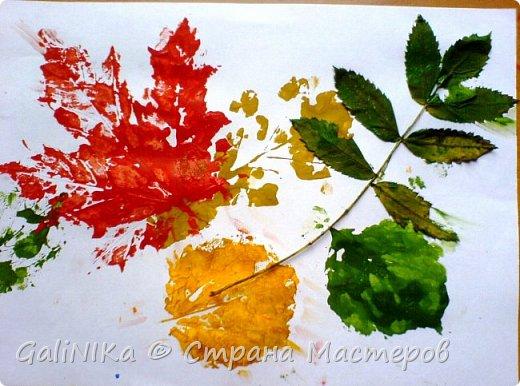 На этой неделе нашлось занятие для моего трёхлетнего внука.  Мы печатаем листья! фото 21