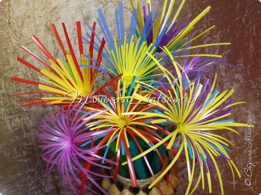 Придумались недавно у меня такие цветочки. Они простые, но забавные, моим знакомым понравились, поэтому решила их выложить. Можно использовать такие цветы как недорогое, но симпатичное украшение стола, можно украсить цветочный горшок или клумбу на даче. Так как они просты в изготовлении, их можно сделать вместе с детьми или использовать в каком-нибудь коллаже. Цветы из пластиковых трубочек в интернете встречаются, но сделанные по другой технологии, из срезанных наискосок кусочков трубочек. Цветы получаются похожие на георгины, красиво,но кончики лепестков получаются очень! острые. По-моему, это небезопасно, особенно при работе с детьми. Таких цветов, как у меня, не встретила.  фото 1