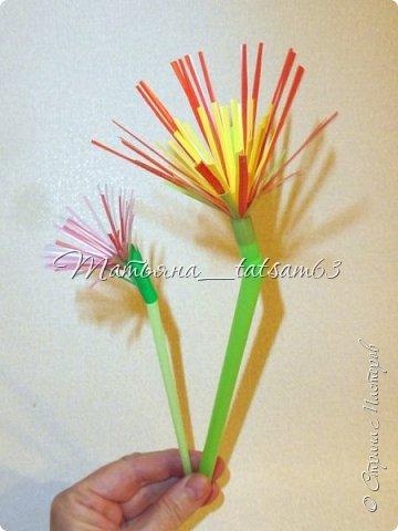 Придумались недавно у меня такие цветочки. Они простые, но забавные, моим знакомым понравились, поэтому решила их выложить. Можно использовать такие цветы как недорогое, но симпатичное украшение стола, можно украсить цветочный горшок или клумбу на даче. Так как они просты в изготовлении, их можно сделать вместе с детьми или использовать в каком-нибудь коллаже. Цветы из пластиковых трубочек в интернете встречаются, но сделанные по другой технологии, из срезанных наискосок кусочков трубочек. Цветы получаются похожие на георгины, красиво,но кончики лепестков получаются очень! острые. По-моему, это небезопасно, особенно при работе с детьми. Таких цветов, как у меня, не встретила.  фото 28