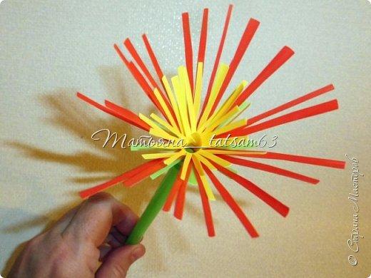 Придумались недавно у меня такие цветочки. Они простые, но забавные, моим знакомым понравились, поэтому решила их выложить. Можно использовать такие цветы как недорогое, но симпатичное украшение стола, можно украсить цветочный горшок или клумбу на даче. Так как они просты в изготовлении, их можно сделать вместе с детьми или использовать в каком-нибудь коллаже. Цветы из пластиковых трубочек в интернете встречаются, но сделанные по другой технологии, из срезанных наискосок кусочков трубочек. Цветы получаются похожие на георгины, красиво,но кончики лепестков получаются очень! острые. По-моему, это небезопасно, особенно при работе с детьми. Таких цветов, как у меня, не встретила.  фото 24