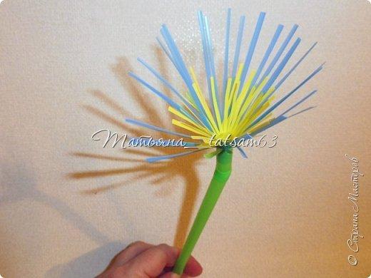 Придумались недавно у меня такие цветочки. Они простые, но забавные, моим знакомым понравились, поэтому решила их выложить. Можно использовать такие цветы как недорогое, но симпатичное украшение стола, можно украсить цветочный горшок или клумбу на даче. Так как они просты в изготовлении, их можно сделать вместе с детьми или использовать в каком-нибудь коллаже. Цветы из пластиковых трубочек в интернете встречаются, но сделанные по другой технологии, из срезанных наискосок кусочков трубочек. Цветы получаются похожие на георгины, красиво,но кончики лепестков получаются очень! острые. По-моему, это небезопасно, особенно при работе с детьми. Таких цветов, как у меня, не встретила.  фото 26