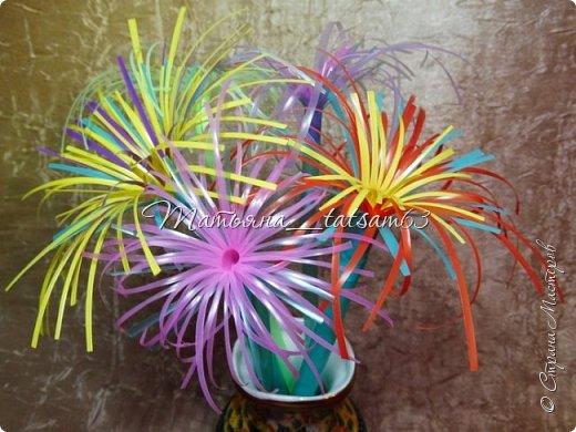 Придумались недавно у меня такие цветочки. Они простые, но забавные, моим знакомым понравились, поэтому решила их выложить. Можно использовать такие цветы как недорогое, но симпатичное украшение стола, можно украсить цветочный горшок или клумбу на даче. Так как они просты в изготовлении, их можно сделать вместе с детьми или использовать в каком-нибудь коллаже. Цветы из пластиковых трубочек в интернете встречаются, но сделанные по другой технологии, из срезанных наискосок кусочков трубочек. Цветы получаются похожие на георгины, красиво,но кончики лепестков получаются очень! острые. По-моему, это небезопасно, особенно при работе с детьми. Таких цветов, как у меня, не встретила.  фото 37