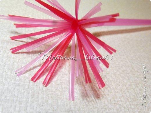 Придумались недавно у меня такие цветочки. Они простые, но забавные, моим знакомым понравились, поэтому решила их выложить. Можно использовать такие цветы как недорогое, но симпатичное украшение стола, можно украсить цветочный горшок или клумбу на даче. Так как они просты в изготовлении, их можно сделать вместе с детьми или использовать в каком-нибудь коллаже. Цветы из пластиковых трубочек в интернете встречаются, но сделанные по другой технологии, из срезанных наискосок кусочков трубочек. Цветы получаются похожие на георгины, красиво,но кончики лепестков получаются очень! острые. По-моему, это небезопасно, особенно при работе с детьми. Таких цветов, как у меня, не встретила.  фото 29