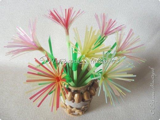 Придумались недавно у меня такие цветочки. Они простые, но забавные, моим знакомым понравились, поэтому решила их выложить. Можно использовать такие цветы как недорогое, но симпатичное украшение стола, можно украсить цветочный горшок или клумбу на даче. Так как они просты в изготовлении, их можно сделать вместе с детьми или использовать в каком-нибудь коллаже. Цветы из пластиковых трубочек в интернете встречаются, но сделанные по другой технологии, из срезанных наискосок кусочков трубочек. Цветы получаются похожие на георгины, красиво,но кончики лепестков получаются очень! острые. По-моему, это небезопасно, особенно при работе с детьми. Таких цветов, как у меня, не встретила.  фото 19
