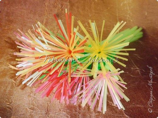 Придумались недавно у меня такие цветочки. Они простые, но забавные, моим знакомым понравились, поэтому решила их выложить. Можно использовать такие цветы как недорогое, но симпатичное украшение стола, можно украсить цветочный горшок или клумбу на даче. Так как они просты в изготовлении, их можно сделать вместе с детьми или использовать в каком-нибудь коллаже. Цветы из пластиковых трубочек в интернете встречаются, но сделанные по другой технологии, из срезанных наискосок кусочков трубочек. Цветы получаются похожие на георгины, красиво,но кончики лепестков получаются очень! острые. По-моему, это небезопасно, особенно при работе с детьми. Таких цветов, как у меня, не встретила.  фото 42