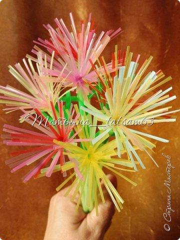 Придумались недавно у меня такие цветочки. Они простые, но забавные, моим знакомым понравились, поэтому решила их выложить. Можно использовать такие цветы как недорогое, но симпатичное украшение стола, можно украсить цветочный горшок или клумбу на даче. Так как они просты в изготовлении, их можно сделать вместе с детьми или использовать в каком-нибудь коллаже. Цветы из пластиковых трубочек в интернете встречаются, но сделанные по другой технологии, из срезанных наискосок кусочков трубочек. Цветы получаются похожие на георгины, красиво,но кончики лепестков получаются очень! острые. По-моему, это небезопасно, особенно при работе с детьми. Таких цветов, как у меня, не встретила.  фото 49