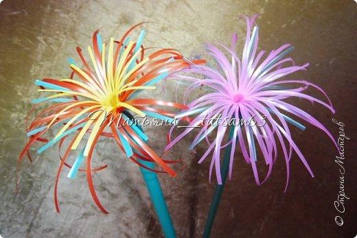 Придумались недавно у меня такие цветочки. Они простые, но забавные, моим знакомым понравились, поэтому решила их выложить. Можно использовать такие цветы как недорогое, но симпатичное украшение стола, можно украсить цветочный горшок или клумбу на даче. Так как они просты в изготовлении, их можно сделать вместе с детьми или использовать в каком-нибудь коллаже. Цветы из пластиковых трубочек в интернете встречаются, но сделанные по другой технологии, из срезанных наискосок кусочков трубочек. Цветы получаются похожие на георгины, красиво,но кончики лепестков получаются очень! острые. По-моему, это небезопасно, особенно при работе с детьми. Таких цветов, как у меня, не встретила.  фото 34