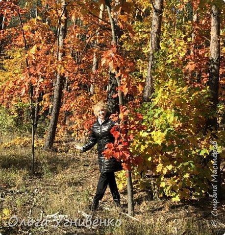 Приветствую всех жителей и гостей прекрасной СТРАНЫ МАСТЕРОВ!! Вчера выдался первый солнечный осенний денек в наших краях.  Я, кончено же, поспешила в лес, запечатлеть великолепные картины художницы Осени. Предлагаю и Вам, дорогой гость, насладиться этим зрелищем. фото 21