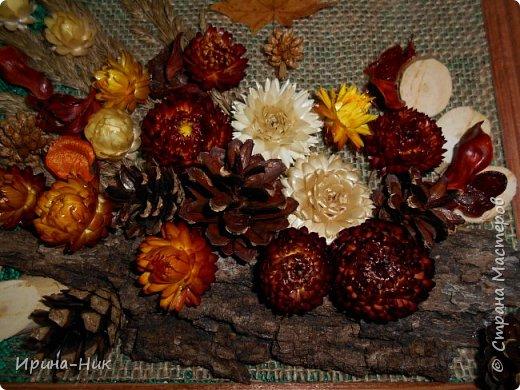 Осень навеяла ))) первое панно из сухих листьев, сухоцветов.  фото 2