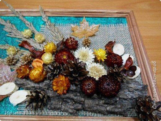 Осень навеяла ))) первое панно из сухих листьев, сухоцветов.  фото 3