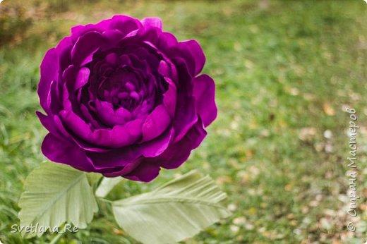 Давно меня привлекают цветы больших размеров, вот решила наваять несколько)) Так сказать, последний привет ушедшему лету))  Думаю, это прекрасное украшение любого торжества...    фото 3