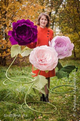 Давно меня привлекают цветы больших размеров, вот решила наваять несколько)) Так сказать, последний привет ушедшему лету))  Думаю, это прекрасное украшение любого торжества...    фото 4