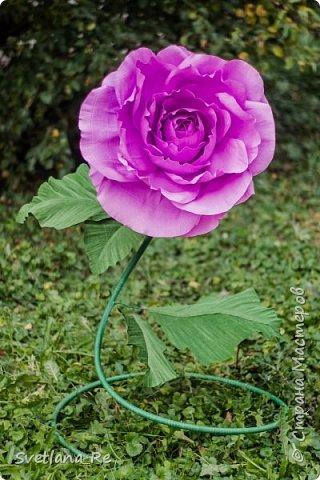 Давно меня привлекают цветы больших размеров, вот решила наваять несколько)) Так сказать, последний привет ушедшему лету))  Думаю, это прекрасное украшение любого торжества...    фото 11