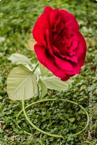 Давно меня привлекают цветы больших размеров, вот решила наваять несколько)) Так сказать, последний привет ушедшему лету))  Думаю, это прекрасное украшение любого торжества...    фото 18