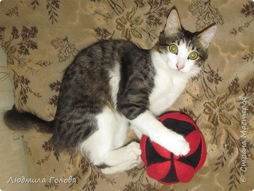 Мяч для кота фото 3