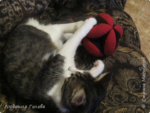 Мяч для кота фото 4
