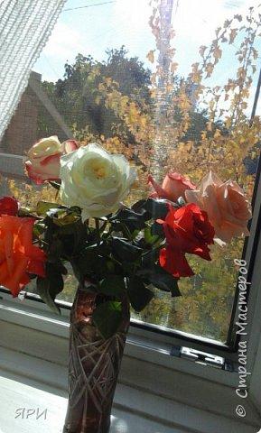 Октябрь — стремительный, такой сочный, такой ароматный в своём золотисто-алом сиянии, с ранними белыми заморозками, с ярким преображением листьев — это совсем другая, волшебная пора, последний дерзкий ликующий всплеск перед лицом надвигающейся стужи. Падают орехи, каштаны в колючих шубках, жёлуди, теряя свои очаровательные шапочки. Мне нравится вышивать мотивы с осенними дарами. фото 3