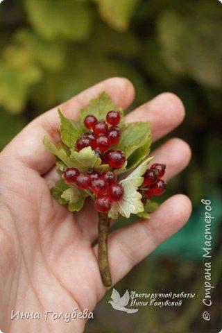 Привет всем жителям Страны!!! Сегодня я к вам с ягодами.Веточки ежевики для композиции и веточка смородины для броши.И поделюсь,как я тонировала листики ежевики. фото 15