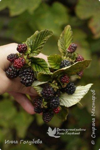 Привет всем жителям Страны!!! Сегодня я к вам с ягодами.Веточки ежевики для композиции и веточка смородины для броши.И поделюсь,как я тонировала листики ежевики. фото 4
