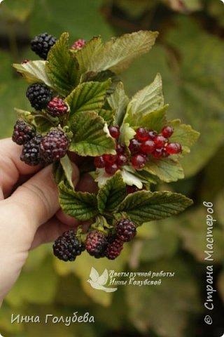 Привет всем жителям Страны!!! Сегодня я к вам с ягодами.Веточки ежевики для композиции и веточка смородины для броши.И поделюсь,как я тонировала листики ежевики. фото 14