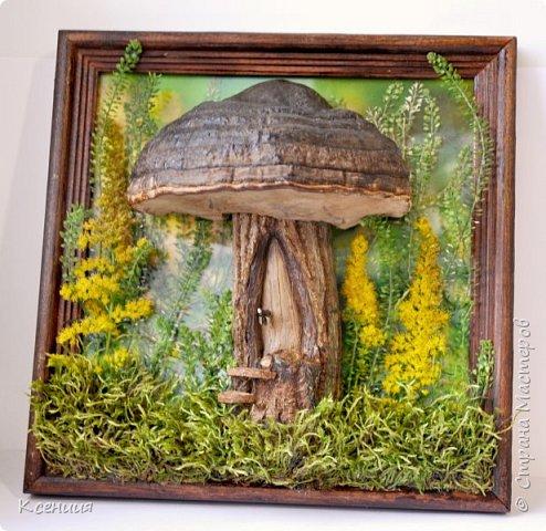 Всем доброго времени суток! Вот такой домик-гриб получился у меня на выставку осенних поделок в школу. Выполнен полностью из природных материалов: шляпка-древесный гриб,ножка гриба-часть спиленной(не мной) толстой ветки дерева, распиленной(мной) пополам), а также мох и неизвестные мне растения, растущие недалеко от дома. фото 1