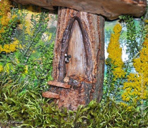 Всем доброго времени суток! Вот такой домик-гриб получился у меня на выставку осенних поделок в школу. Выполнен полностью из природных материалов: шляпка-древесный гриб,ножка гриба-часть спиленной(не мной) толстой ветки дерева, распиленной(мной) пополам), а также мох и неизвестные мне растения, растущие недалеко от дома. фото 2