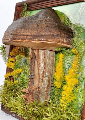Всем доброго времени суток! Вот такой домик-гриб получился у меня на выставку осенних поделок в школу. Выполнен полностью из природных материалов: шляпка-древесный гриб,ножка гриба-часть спиленной(не мной) толстой ветки дерева, распиленной(мной) пополам), а также мох и неизвестные мне растения, растущие недалеко от дома. фото 3