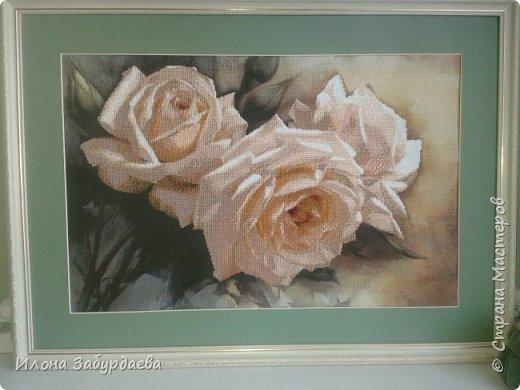 Частичная вышивка крестом , вышиты только розы.  фото 2